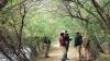 વન રક્ષકોની ચીમકી- માંગણી નહિ સ્વિકારાય તો આંદોલન થશે