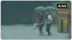 #CycloneTauktae: ગુજરાતના 21 જિલ્લાઓમાં થઈ રહ્યો છે મૂસળધાર વરસાદ, રાજસ્થાન થઈને હિમાલય તરફ વધશે વાવાઝોડુ