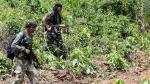છત્તીસગઢઃ સુકમામાં સુરક્ષાબળોએ 3 નક્સલીઓને ઠાર માર્યા, હથિયાર જપ્ત