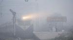ધૂમ્મસનો પ્રકોપ યથાવત, વિઝિબિલીટી 50 મીટરથી ઓછી, 22 ટ્રેનો લેટ, પારો 8 ડિગ્રી