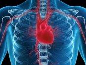 વિશ્વ હૃદય દિવસ: જાણો 29મી સપ્ટેમ્બર અને દિલનું શું છે કનેક્શન