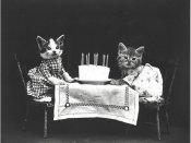 અમેરિકન ફોટોગ્રાફરે 100 વર્ષ પહેલાં ખેંચી હતી આ તસવીરો