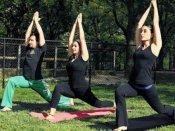 Yoga Day Spl: પેટ ફ્લેટ કરવા માટે 10 યોગાસન