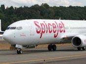 સુરતઃ રનવે પર ભેંસ સ્પાઇસ જેટના વિમાન સાથે અથડાઇ