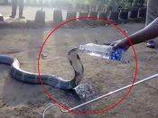 Viral Video:તરસ્યા કોબરાને જ્યારે પોલીસે ધરી પાણીની બોટલ..