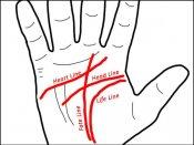 શું તમારા હાથમાં પણ બે ભાગ્ય રેખાઓ છે?