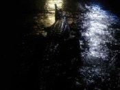 ઑસ્ટ્રેલિયામાં ભયંકર વરસાદ, રસ્તા પર દેખાયા મગરમચ્છ અને સાપ