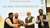 International Tiger Day: પીએમ મોદીએ જાહેર કર્યો રિપોર્ટ, જાણો કેટલી થઈ વાઘની સંખ્યા