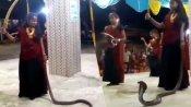 કોબ્રા સાપને હાથમાં લઈને છોકરીઓએ ગરબા કર્યા, વીડિયો વાયરલ