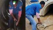 Video: અચાનક 13 ફૂટનો લાંબો કિંગ કોબ્રા દેખાયો, હડકંપ મચ્યો