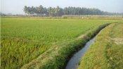 ગુજરાતઃ કોંગ્રેસે પાક વીમાની ચૂકવણીમાં લગાવ્યો કૌભાંડનો આરોપ
