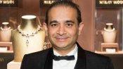 નીરવ મોદી મામલે મોટી સફળતા, સરકારે વસૂલ્યા 24.33 કરોડ રૂપિયા