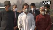 Farmers protest: રાહુલ ગાંધી બોલ્યા - મોહન ભાગવત વિરોધ કરશે તો તેમને પણ આતંકી કહેવામાં આવશે