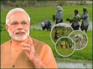 PM Kisan: આ રાજ્યોની નિષ્ક્રિયતાને કારણે લાખો ખેડૂતોને નથી મળી રહ્યા પૈસા