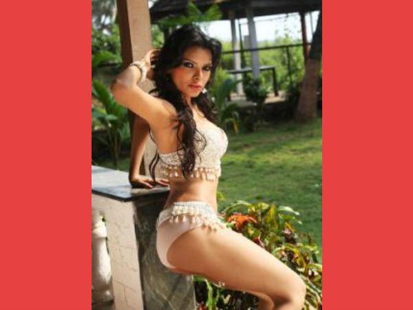 Here Hot Pictures Sherlyn Chopra Kamasutra 3d