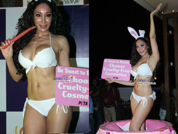 Sofia Hayat Celebrated Birthday With Peta
