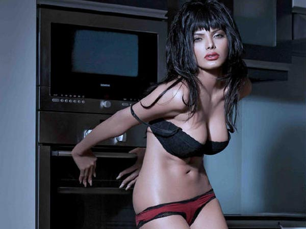 Sherlyn Sizzles Playboy Magazine Cover