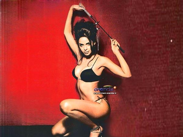 Sexy Mallika Sherawat Booked New Year Us 150 Lacs