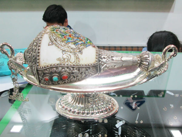 Conch Shell Showing In Vibrant Gujarat
