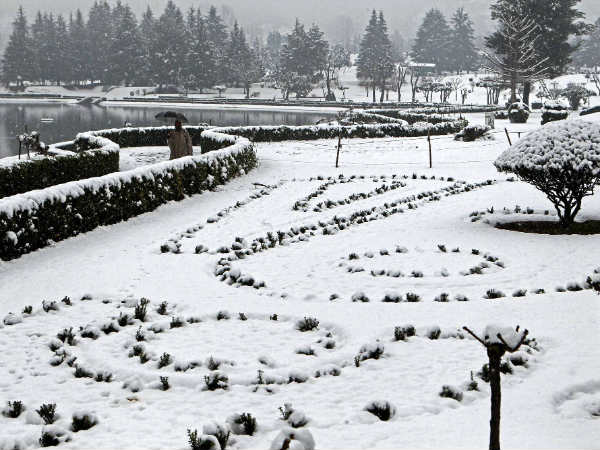 In Pics Heavy Snowfall In Srinagar