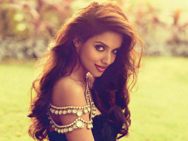 Asin Denies Reports Marriage With Nri