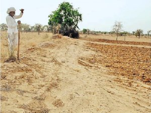 Crore Drought Relief Package For Maharashtra