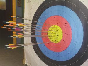 Light Parody On Janak Archery