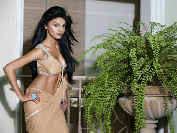 Sherlyn Looks Hot In Indian Saree Also