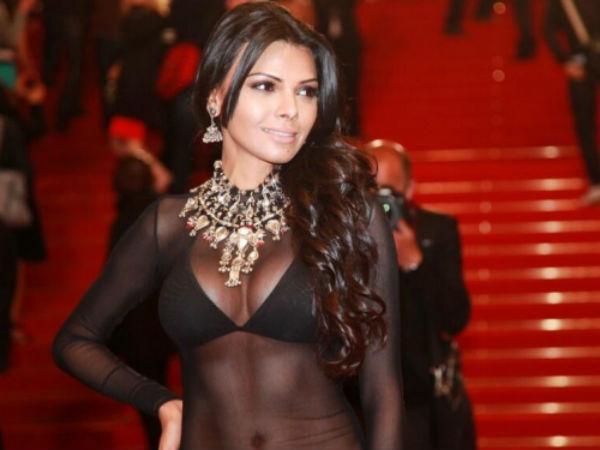 Sherlyn Chopra Wears Transparent Dress At Cannes
