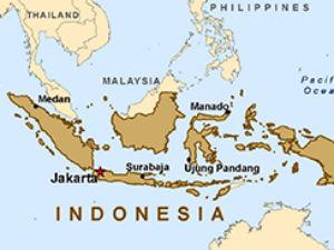 Muslim Majority Indonesia Gifts Saraswati Statue To Us