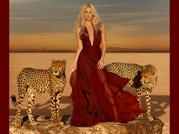 Shakira Models With Cheetahs