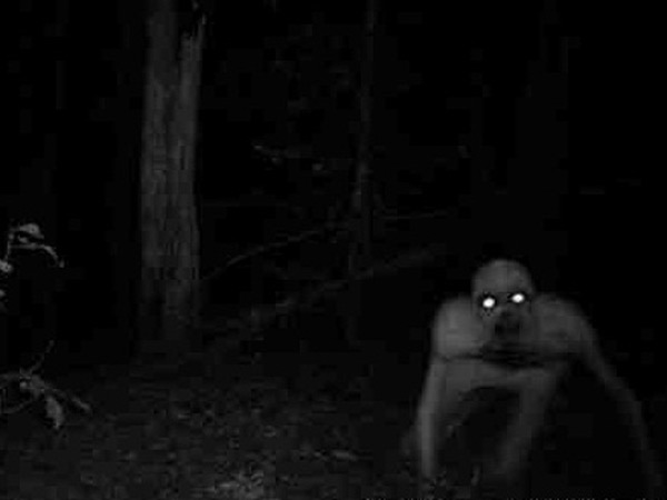 Terrifying Mysterious Creatures