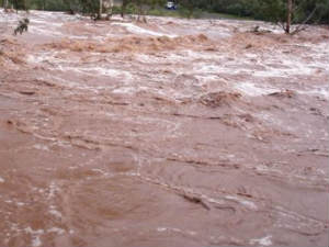 Up Villages Hit By Floods Following Incessant Rains