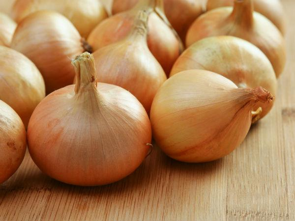 Buy Onion Online Price Only Rs 9 Per Kg