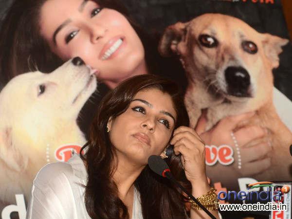 Adopt Stray Dogs Appeals Raveena Tandon