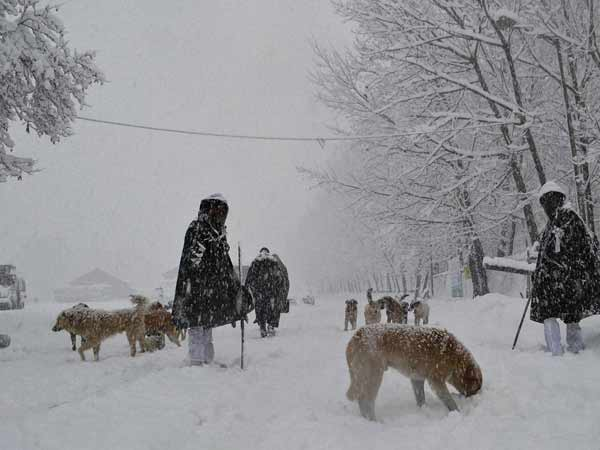Fresh Heavy Snowfall Kashmir Cut Off From Country