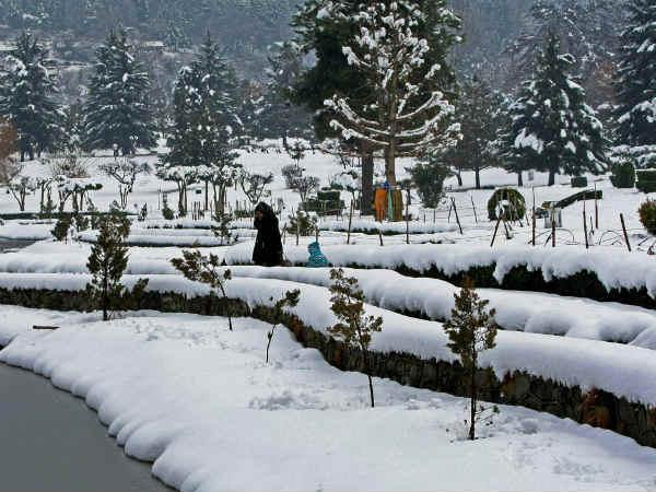 Fresh Snowfall Kashmir Valley Temperature Drops Further