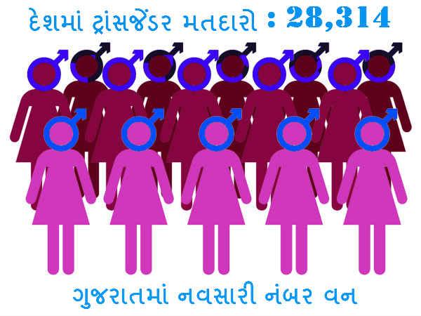 Transgender Electors Enrolled Others Gender Gujarat 261 Others 016426 Lse