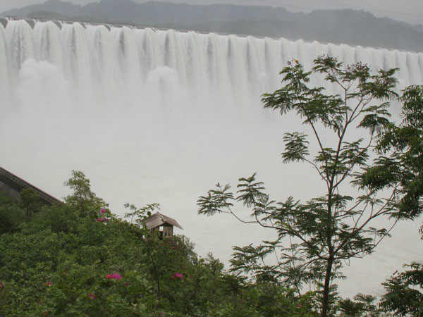 Some Intresting Fact About Narmada Dam Its Hight