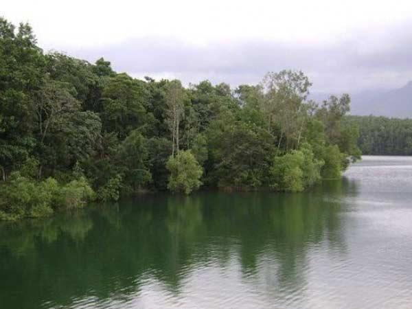 Ponmudi Tourism The Salubrious Land Hills