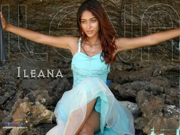 Ileana Hint About Marriage