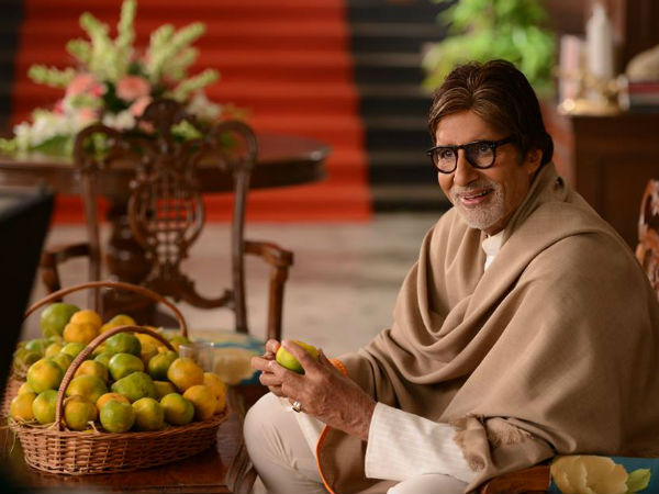 Amitabh Bachchan Will Promote Mahrashtra S Horticulture