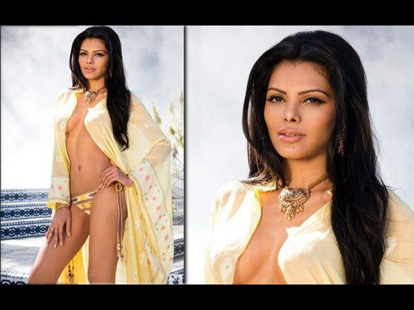 Hot Sherlyn Chopra Pics Playboy Magazine Is Out