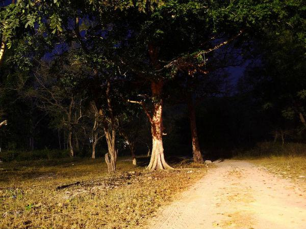 Delhis Most Haunted Places Where You Dare To Go Alone