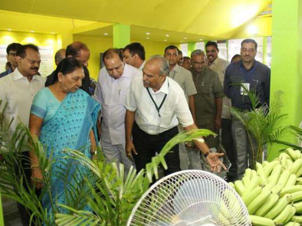Gujarat 3 Day Long Agritech Asia 2014 Exhibition Opens In Gandhinagar