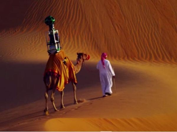Google Used Camel Take Its Street View Trekker Camera Throug