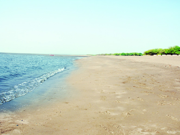 Bhavnagar S Ghogha Beach Is Best Picnic Place