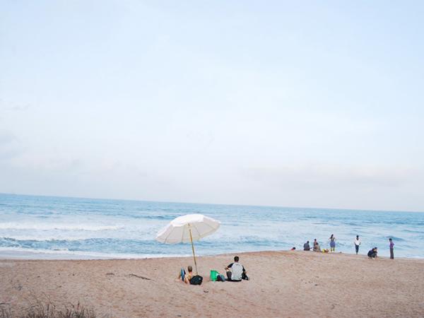 Gujarat S Famous Beach Madhavpur Beach Porbander
