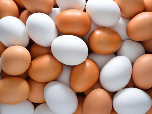 Round Chicken Egg Fetches Rs 46000 In Auction