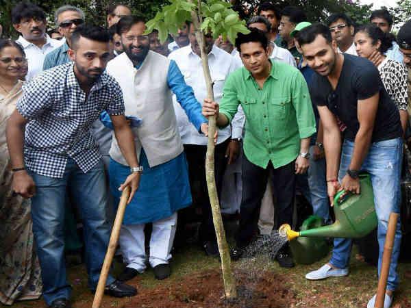 Sachin Rohit Ajinkya Rahane Plant Sapling World Environment Day
